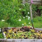 Kompostavimas namų sąlygomis