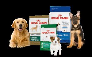 Žinomiausias Royal canin maistas šunims – ar, šiuo atveju, žinomumas įtvirtina kokybę?