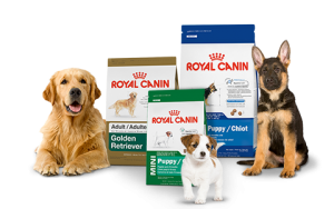 royal canin maistas šunims